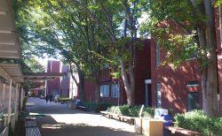 尚美学園大『ありがとう!上福岡キャンパス』に参加してきました。